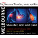 Shoulder Arm and Hand Disorders Seminar