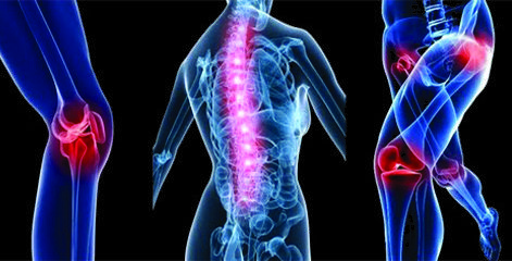 The Nature of Muscles, Joints and Pain – Module 1 Image