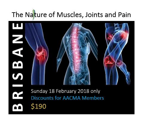 Ticket - Brisbane - Sunday Only